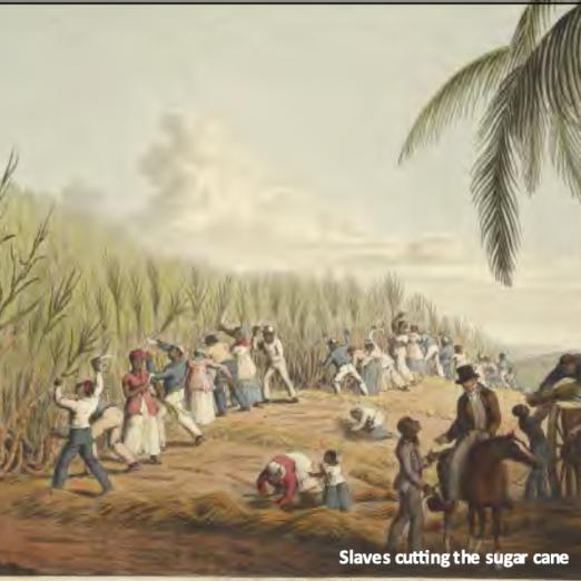 Jamaican Plantation | British Library